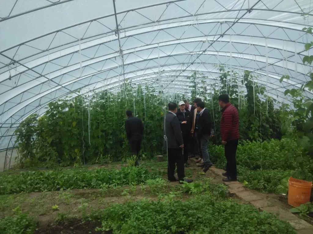 北大荒农业合作4
